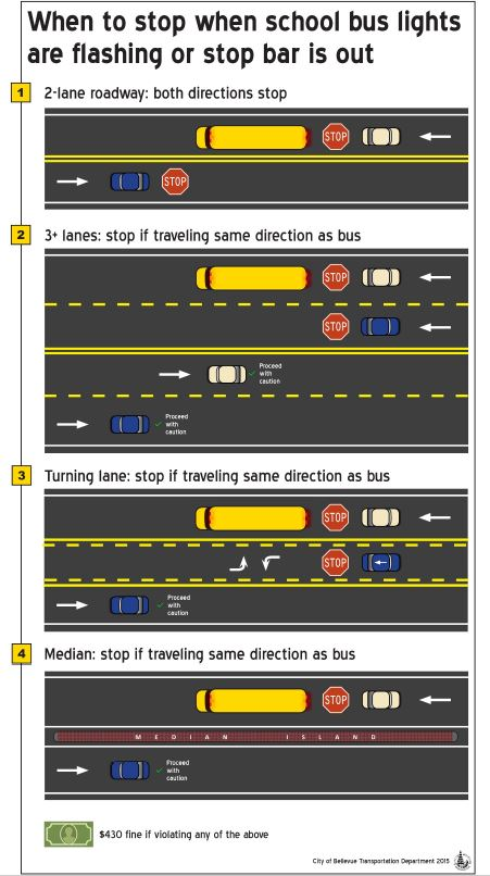Infographic about when to stop when school bus lights are flashing or stop bar is out