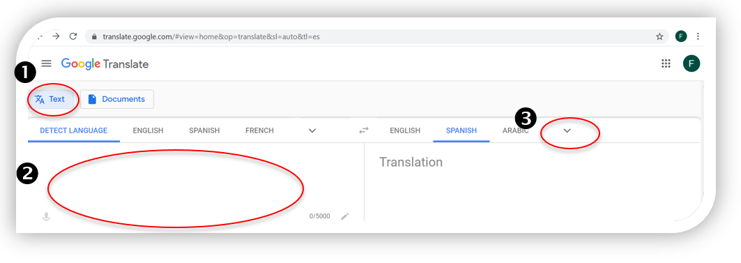 Google Translate - Text